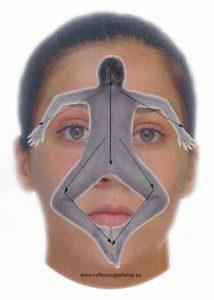 GZT - lichaam op gezicht